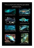 Colour guide of Palau herbivores - Marine Spatial Ecology Lab - Page 4