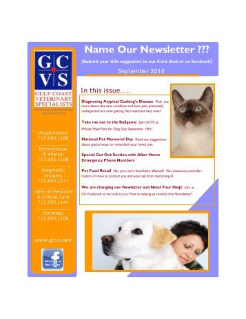 Name Our Newsletter - Gulf Coast Veterinary Specialists
