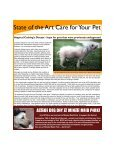 Name Our Newsletter - Gulf Coast Veterinary Specialists - Page 2