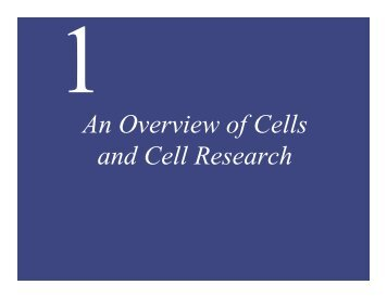 An Overview of Cells and Cell Research