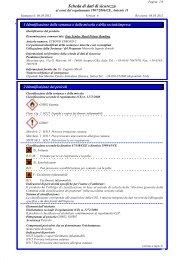 Scheda di dati di sicurezza - Gruppo Micerium