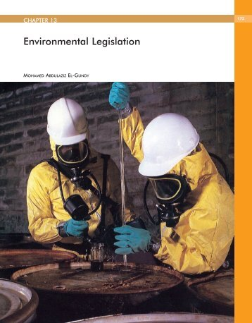 Chapter 13 - Arab Forum for Environment and Development