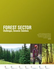 Forestry - Genome Canada