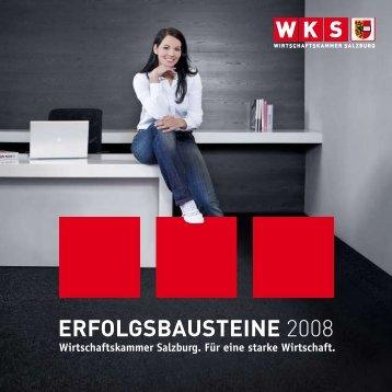 ERFOLGSBAUSTEINE 2008 - Wirtschaftskammer Salzburg