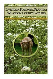 Poisonous Plants Booklet - Whatcom County