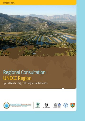 Download the final report - Groundwater Governance