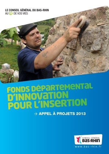 document conseil general bas rhin fonds innovation insertion 2013