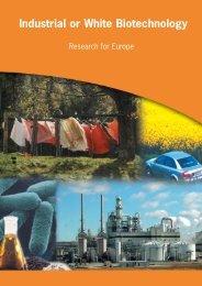 Industrial or White Biotechnology - Bio-Economy