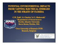 Charles Finkl, Potential Environmental Impacts from Tapping Ocean ...