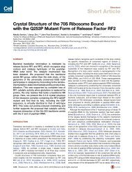 Crystal Structure of the 70S Ribosome Bound with the Q253P ...