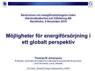 Möjligheter för energiförsörjning i ett globalt perspektiv - Riskkollegiet