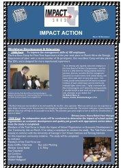 IMPACT ACTION - Chamber Organizer