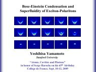 Bose-Einstein Condensation and Superfluidity of Exciton-Polaritons ...