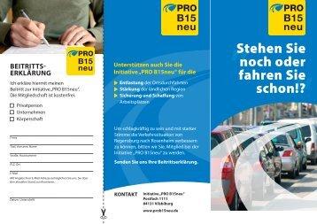 Flyer (PDF/Größe 2,9MB) - DIE INITIATIVE PRO B15neu