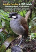 Antpitta Paradise: A 2010 Update - Neotropical Bird Club - Page 2