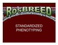 General guidelines for standardized phenotyping - RosBREED