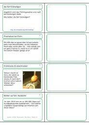 16 Fragen von 2011-05 - memoCARD