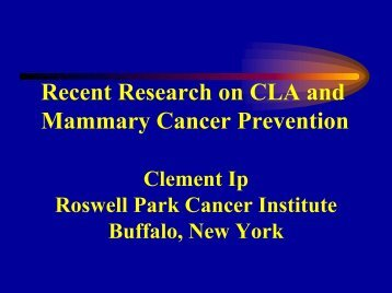 Recent Research on CLA and Mammary Cancer Prevention