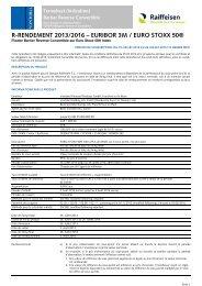 r-rendement 2013/2016 – euribor 3m / euro stoxx 50 - Raiffeisen