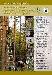 kā izgatavot un uzstādīt būri meža pūcei, urālpūcei, apodziņam ...