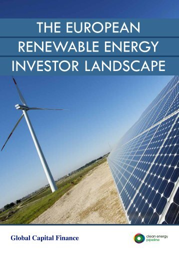 The European Renewable Energy Investor Landscape