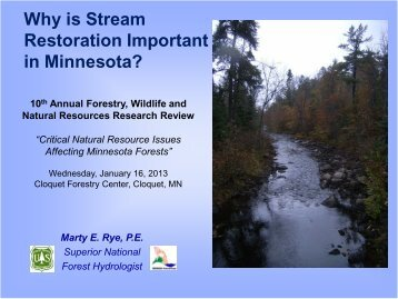 Why is Stream Restoration Important in Minnesota?