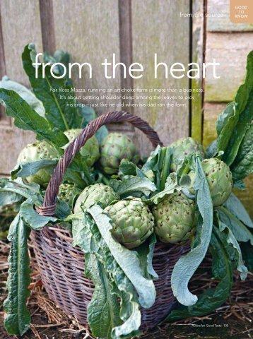 Growing globe artichokes - Kimberly Gillan
