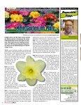 Einkaufswelt 02 /2010 - Seite 2