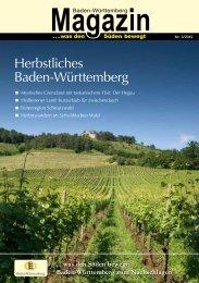 Ausgabe 3/2012 - PR Presseverlag Süd GmbH