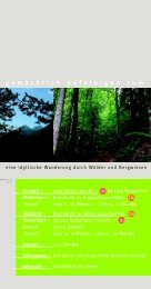 eine idyllische Wanderung durch Wälder und Bergwiesen