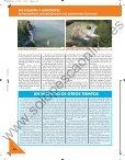 catástrofes: incendios catástrofes: incendios - Solopescaonline.es - Page 6