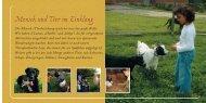 Mensch und Tier im Einklang - Sonnenblumenhof