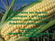 El Maíz ante las Nuevas Tecnologías y el Cam bio Clim ático: un ...