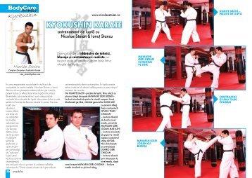 KyoKushin Karate - Nicolae Stoian