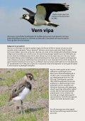 Vern vipa brosjyre.pdf - Karmøy kommune - Page 2