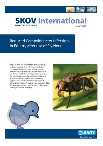 Campylobacter Infections (PDF version) - Skov A/S