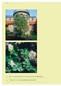 Die sinnlichen Gärten des Albertus Magnus - Seite 4