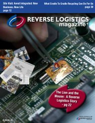 The Lion and the Mouse: A Reverse Logistics Story - pg 22