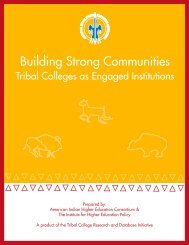 Building Strong Communities - American Indian Higher Education ...