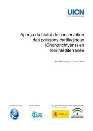 Aperçu du statut de conservation des poissons cartilagineux - Shark ...