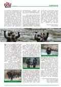 Task Force 25 - Österreichs Bundesheer - Seite 7