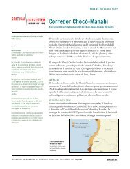 Corredor Chocó-Manabí - Library - Conservation International