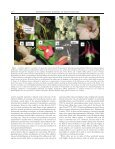reproductive assurance and the evolution of pollination specialization - Page 2