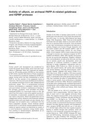 Activity of ulilysin, an archaeal PAPP-A-related ... - Reymond Group