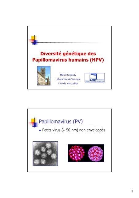 Papillomavirus genetique, Papillomavirus humain stade 3 Molluscum papillomavirus