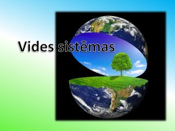 Vides sistēmas