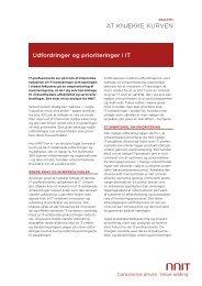 Læs analysen om it-chefens udfordringer her (PDF) - NNIT