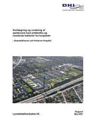 Kortlægning og vurdering af spildevand med antibiotika og ...