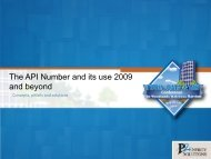 The API Number and its use 2009 and Beyond - Oil Information ...