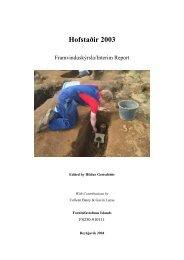 Hofstaðir 2003: Interim Report - Nabo